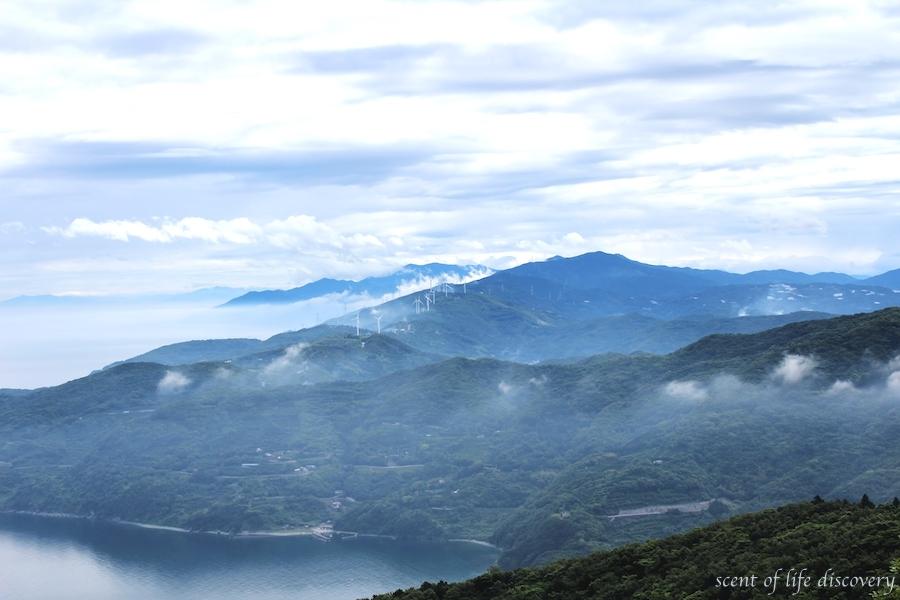 【愛媛】温泉街の雰囲気がいい道後温泉と地の果て好きのあなたにお勧めな佐田岬