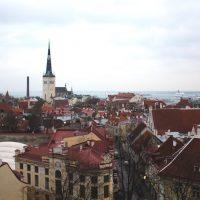 【エストニア】昼間のタリンでは街歩きと雑貨屋めぐりが楽しい
