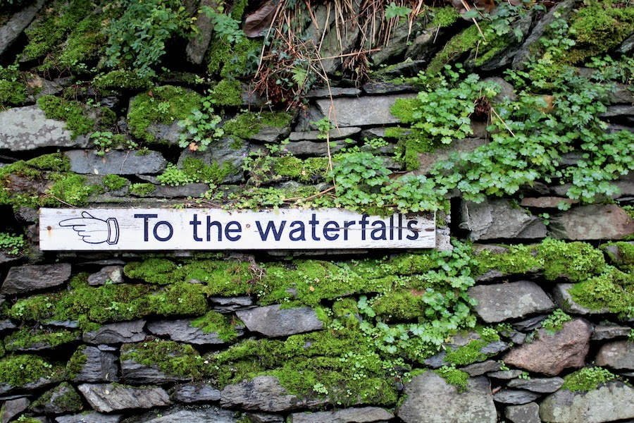 stockghyll force sign