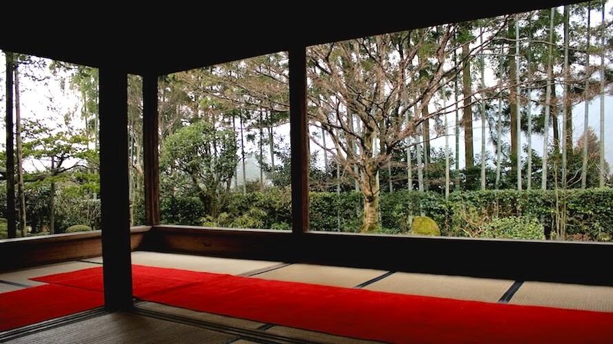 【京都】抹茶をいただきながらのんびりするのがいい大原実光院と宝泉院(+夜の東寺)