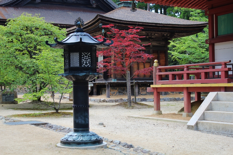 【和歌山】高野山 キリリと美しい壇上伽藍