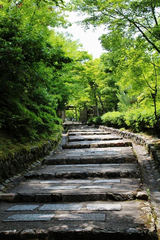 adashino nenbutsuji1