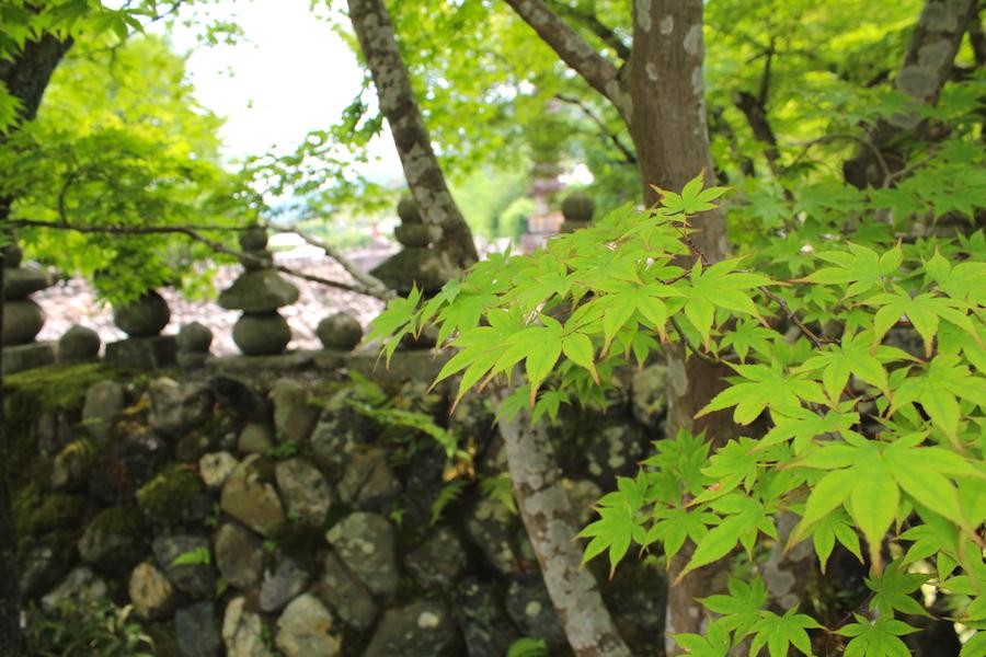 adashino nenbutsuji6