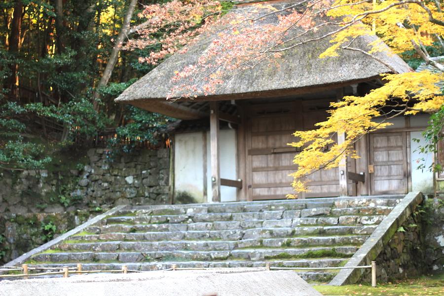 honenin autumn