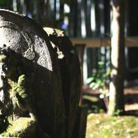 【京都洛北】石仏好き必見!赤山禅院の三十三観音・十六羅漢