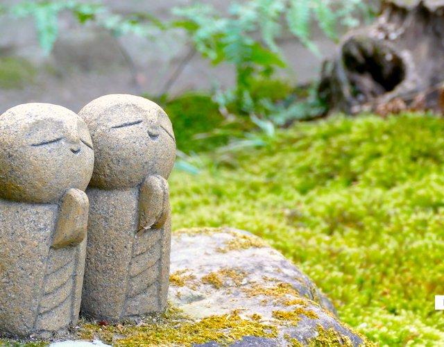 【京都】秋以外は静かな一乗寺エリアから南下する半日コース(詩仙堂・圓光寺・法然院)