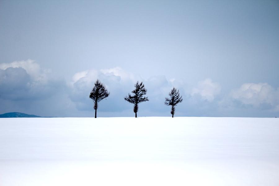 【北海道】寒いけど冬に行くのが経済的にもおすすめな4つの理由