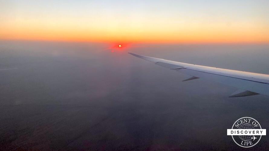 エティハド航空のエコノミークラスを利用した感想【機内食や座席の写真有】